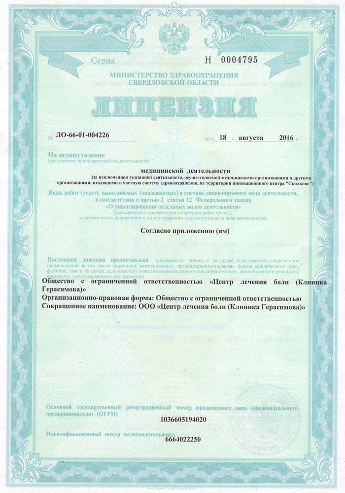 licenziya-1